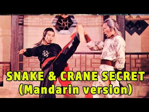 Wu Tang Collection - Snake & Crane Secret (ENGLISH Subtitled)