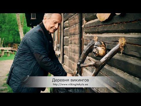 Михаил Задорнов. Деревня викингов!