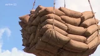 Der extreme Drogenhandel in Afrika   DOKU 2017 HD