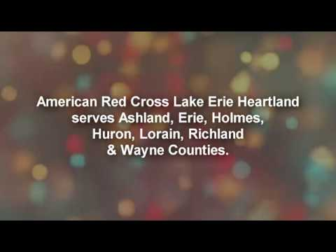 American Red Cross Festival of Trees ~O' Holy Night, Trans Siberian Orchestra