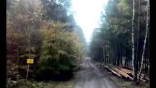 transport lesny