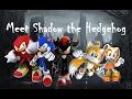 Sonic The Hedgehog Meet Shadow The Hedgehog mp3