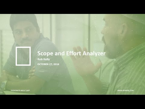 Scope and Effort Analyzer: Your Guide to an Efficient and Supported SAP Landscape