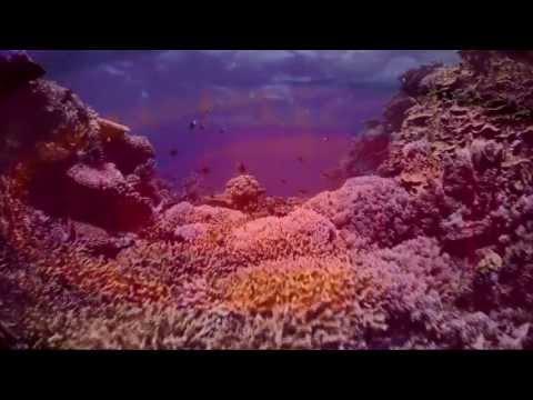 (POST ROCK) ALTAMAR - Salinas Grandes (video 2)