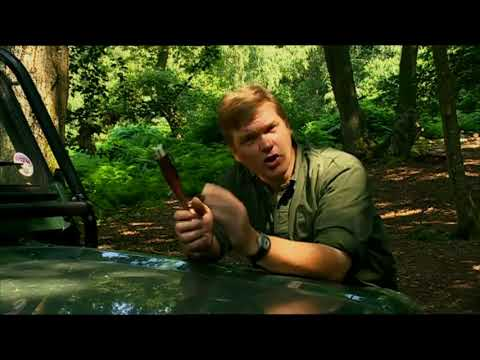 Ray Mears - How to Handle a Knife, Bushcraft Survival