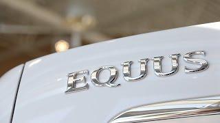 2016 Hyundai Equus Chauffeur anyone смотреть