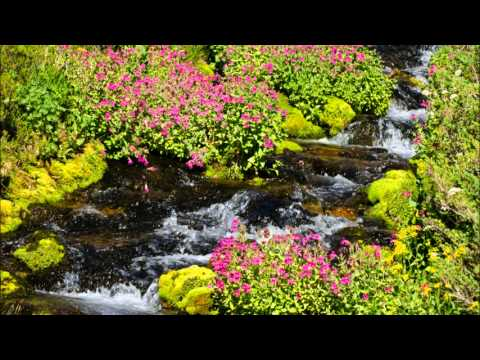 Relaxing Woodwind Music  Tranquil Water Sounds  Flute, Clarinet, Oboe, Bassoon, Guitar,