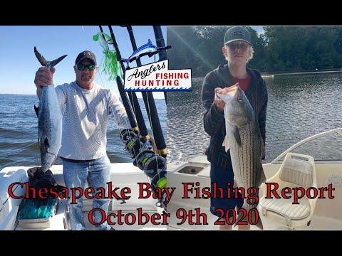 Chesapeake Bay Fishing Report: October 9th 2020