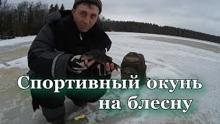 Блесна. Спортивная рыбалка с Евгением Замятиным №18! Ловля форели.