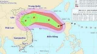 Tin bão Mới Nhất trên Biển Đông  : Cơn bão số 11