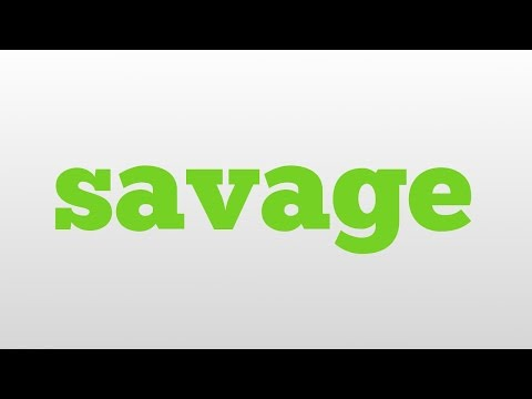 savage meaning and pronunciation