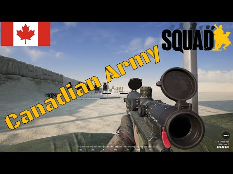 Squad Weapons Showcase | ALL Canadian Army Infantry Weapons 2020