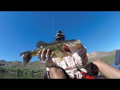 Canyon Lake, AZ  | SUMMER KAYAK BASS FISHING