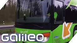 Flixbus - 4 Gründe, warum Fernbusfahrten so billig sind | Galileo | ProSieben