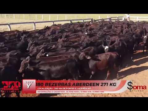 BATERIA Y21 E Y22