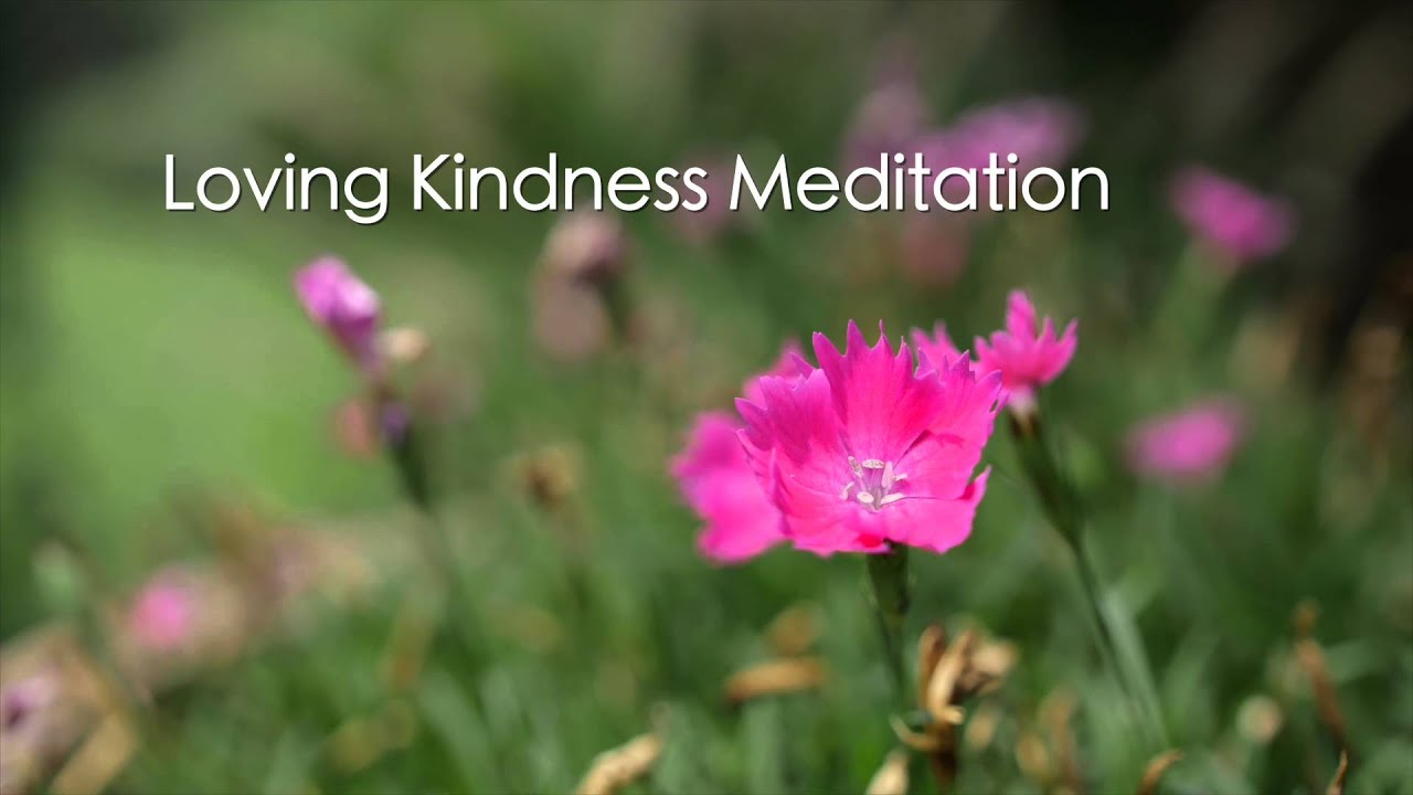 loving kindness Lovingkindness [isbe] lovingkindness - luv-ing-kind'-nes (hecedh): lovingkindness in the king james version always represents this word (30 times), but of hecedh there are many other renderings, eg mercy (frequently), kindness (38), goodness (12.