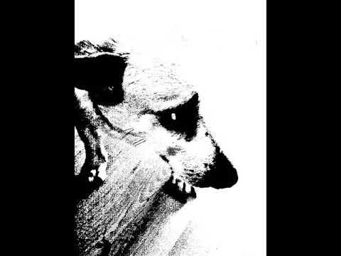 Post Meta Poser - Tribute to XXXTENTACION
