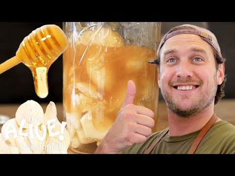 Brad Makes Fermented Garlic Honey | Its Alive | Bon Appétit