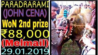 Paradarami john cina WoN 2nd prize (melmail)2019