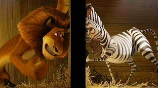 DreamWorks Madagascar | Zoo Transfer - Shipped to Africa Movie Clip | Kids Movies