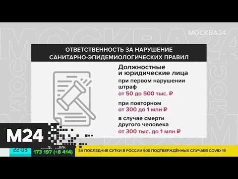Штрафы за нарушение карантина в России составят до миллиона рублей - Москва 24