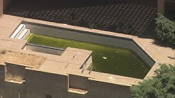 Mosquito-infested pool at foreclosed house draws health concerns