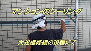 マンション外壁タイルのシーリング thumbnail