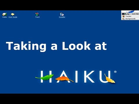 Haiku R1 Beta 1 Overview