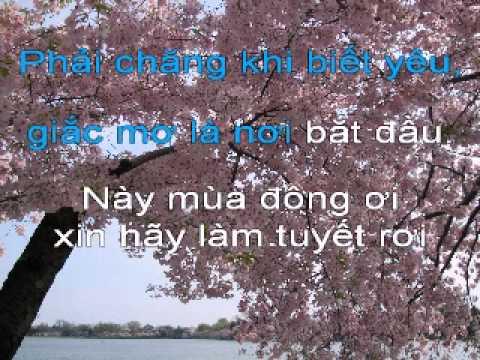 Noi Tinh Yeu Bat Dau - Karaoke.avi
