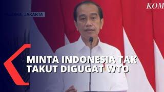 Stop Kebijakan Ekspor Bahan Mentah, Jokowi Tak Takut Digugat WTO
