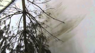 Une oeuvre en vidéo : FORST par Michael Sailstorfer, Berlinische Galerie (alternatif-art)