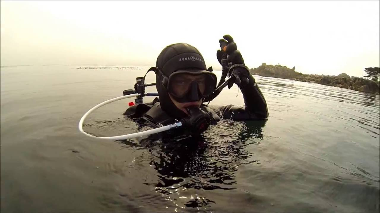 Scuba diving and spearfishing in monterey california youtube scuba diving and spearfishing in monterey california 1betcityfo Gallery