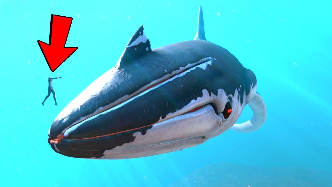 New Leviathans All Arctic Creatures Subnautica Below Zero