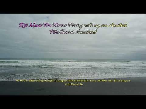Drone Fishing Piha Beach Auckland