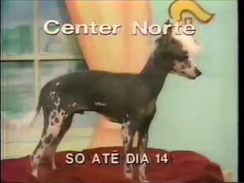 Intervalo Rede Manchete - Jornal da Manchete - 22/09/1990 (1/5)