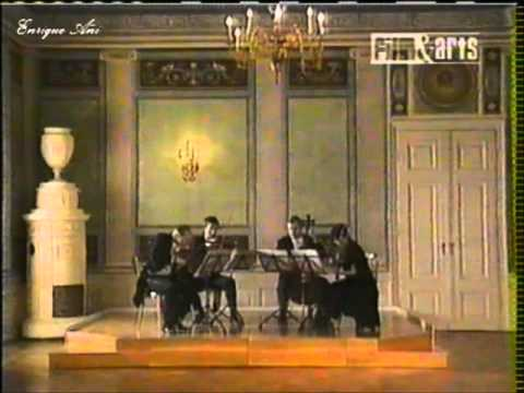 Peter Ustinov Presenta: Celebrando a Haydn