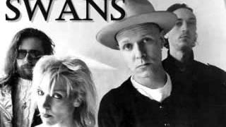 Swans - Love Will Tear Us Apart (Audio)