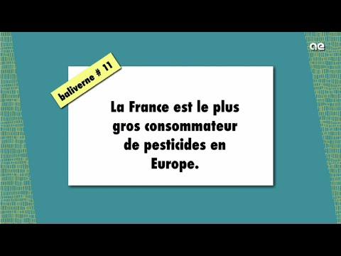 La France est le plus gros consommateur de pesticides en Europe / BALIVERNE #11