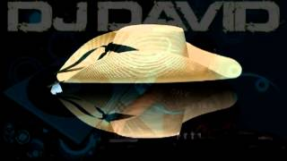 zapateado calentano mix,dj david.mp4
