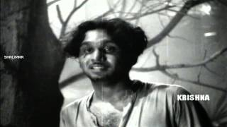 Kudi Yedamaithe Video Song || ANR Devadasu Movie ||  Akkineni Nageswara Rao, Savitri