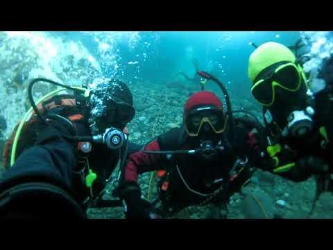 オホーツク流氷ダイビング記念動画