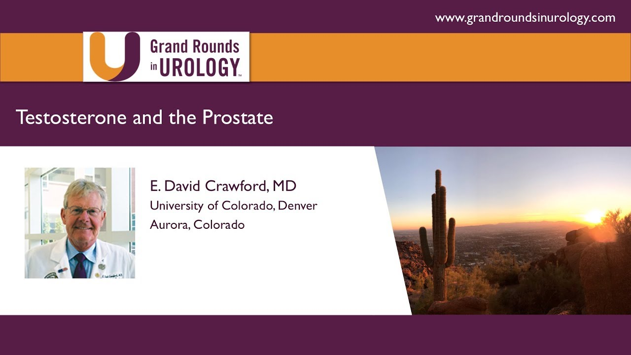 E  David Crawford | Testosterone and the Prostate | Prostate Cancer