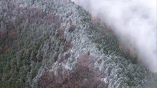 初冠雪が観測された金剛山周辺 大阪と奈良府県境 thumbnail