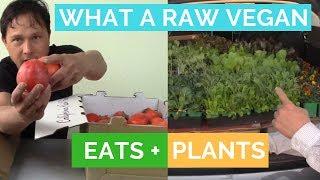 What a Raw Vegan Eats & Plants | Plant + Produce Shopping Haul