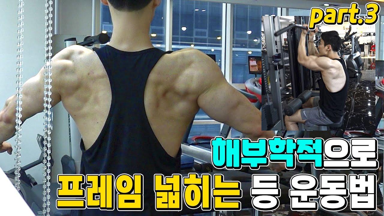 해부학적으로 등 근육 프레임 넓히는 운동법 3화 / 넓은 등 만드는 운동법 설명&루틴