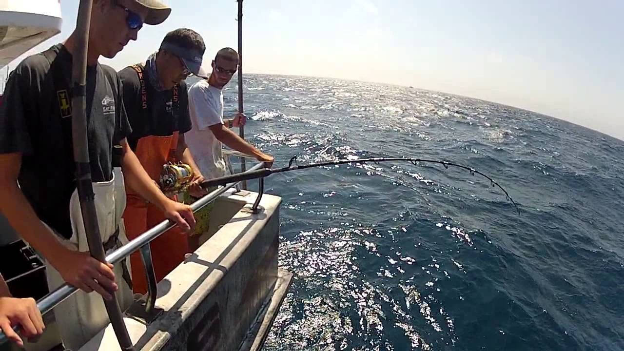 Yellowfin tuna fishing at frances fleet r i 9 5 2014 for Frances fleet fishing