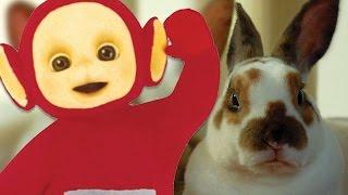 Teletubbies: Jigsaw - Rabbits | 184 | Cartoons for Children