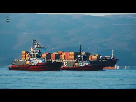 MSC POH LIN (CONTAINER SHIP) & ZEYCAN Y  /  GARIP Y (Tugboat)