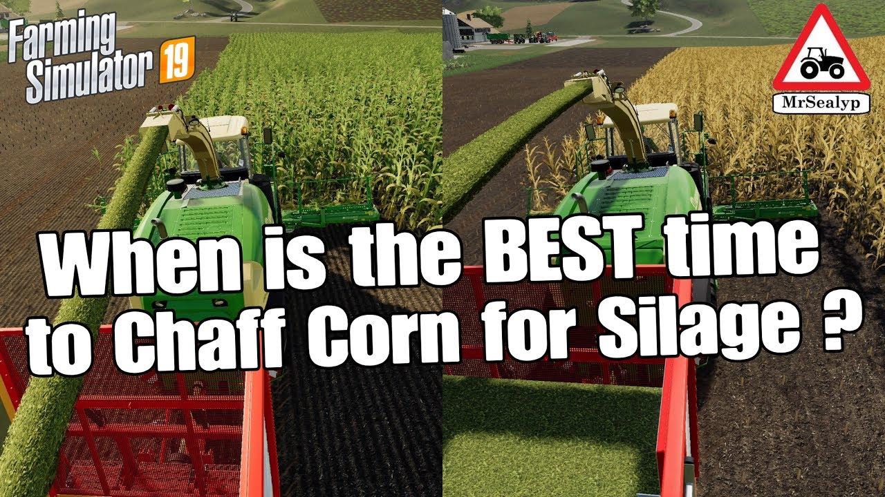 How profitable is silage in Farming Simulator 2019? – Farming Simulation