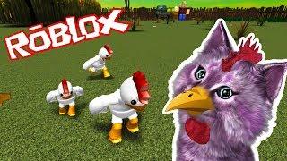 СИМУЛЯТОР КУРИЦЫ в РОБЛОКС ROBLOX Chicken Simulator КОШКА ЛАНА играет